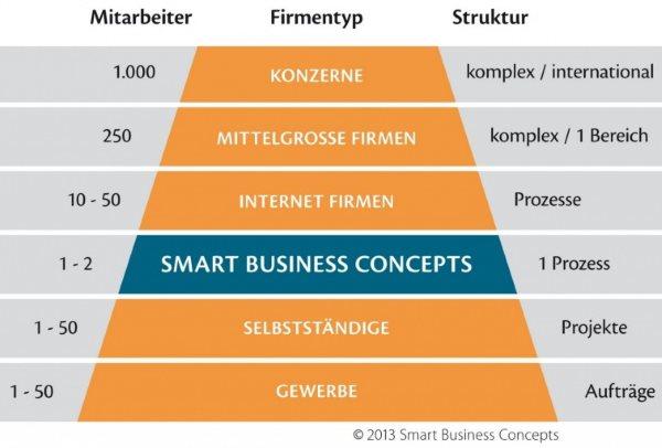 "Firmentypen neu gedacht - Buch-Rezension  ""Solopreneur: Plädoyer zum Alleingang"", Quelle: http://smartbusinessconcepts.pressefach.de/medien/"